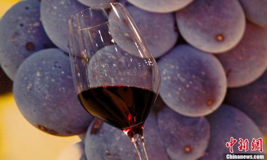 资料图:葡萄酒。