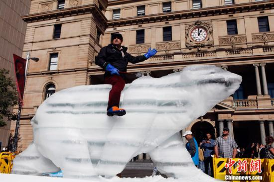 """资料图:为了唤起人们对气候变迁、全球变暖问题的关注,英国雕塑家马克・科尔斯发起了一系列""""冰雕北极熊""""装置艺术展。6月3日,展览移师澳大利亚悉尼。科尔斯的作品都是现场雕出实际尺寸的北极熊并于户外展出。只要几天时间,以冰块雕砌成的北极熊就会逐渐融化,最后只留下一滩水,让不少看过的民众印象深刻,也更能感受到全球暖化问题真实存在。"""
