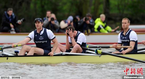 资料图片:牛津大学与剑桥大学一年一度的的赛艇比赛在泰晤士河上举行。