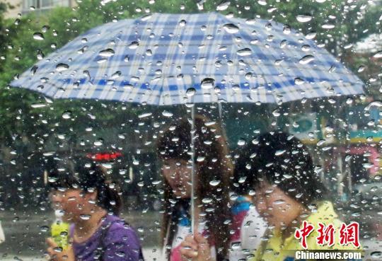 资料图:打着雨伞的市民在街头经过。泱波 摄