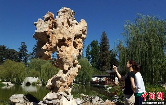 流芳园一期工程的太湖石。中新社发 毛建军 摄
