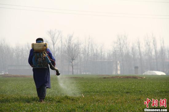 资料图:农民喷洒除草剂。 李世伟 摄