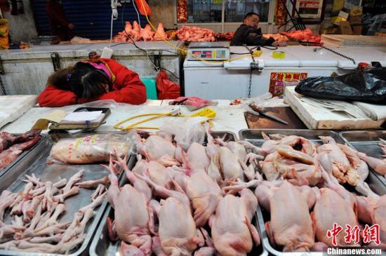 资料图:禽肉摊。/p中新社发 韦亮 摄