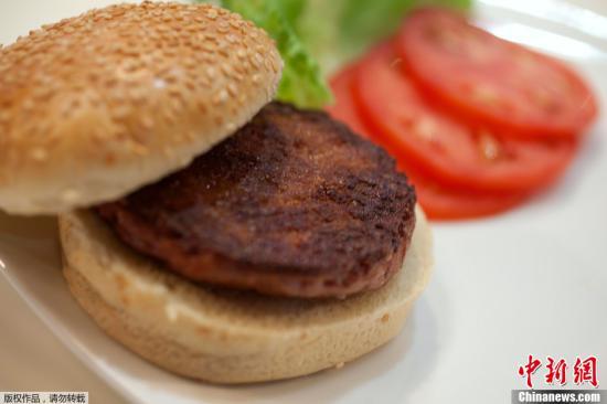 """当地时间8月5日,世界上第一片""""人造牛肉""""在英国首都伦敦问世。当地厨师在黄油和葵花油中将这片牛肉微微煎了一下,做成了首个人造牛肉汉堡,并在伦敦一家餐厅对进行试吃。 据外媒报道,该""""人造牛肉计划""""是由荷兰马斯特里赫特大学推出的。科学家们首先从牛的肌肉组织中提取出干细胞;然后通过实验室的营养物质和促进生长的化学制品来培育这些细胞,促进其发育和繁殖;三周后,超过100万干细胞被放到小容器里,这些干细胞在这里聚集成小的肉丝,大约1厘米长、几毫米厚。这些小的肉丝被收集冷冻起来,当数量足够后,它们就会被解冻,压缩成一块肉饼。"""