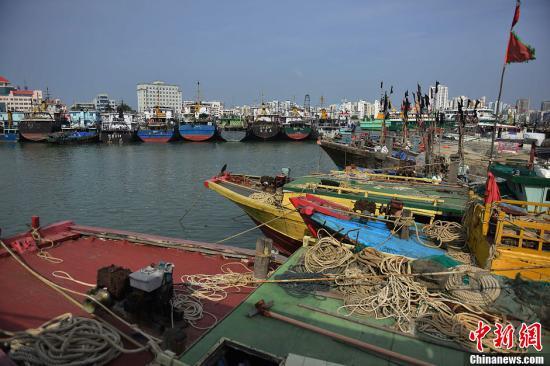 """10月13日,在海口新港码头停靠了众多回港避风的渔船。受今年第25号台风""""百合""""影响,海南省三防总指挥部已于12日19时启动防台风Ⅳ级应急响应,全省已有26879艘渔船回港,2万余渔民上岸避风,另有36艘渔船在回港途中。中央气象台于12日下午将台风预警等级提升为橙色仅次于最高等级红色。据了解,台风""""百合""""13日上午8时中心位于北纬15.2度,东经114.7度,在距离海南省三沙市西沙永兴岛东南方向约310公里的南海海面上,中心附近最大风力13级,风速达到38米每秒,七级大风范围半径280公里,十级大风范围半径100公里。预计,""""百合""""将以每小时15公里左右的速度向偏西方向移动,强度逐渐加强。..."""