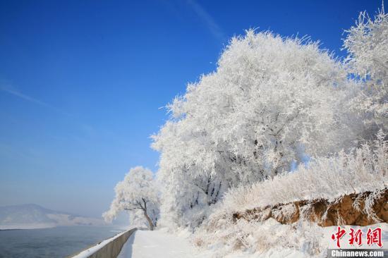 资料图:吉林省吉林市龙潭区乌拉街满族镇雾凇岛的雾凇美景。中新社发 朱建伦 摄 图片来源:CNSPHOTO