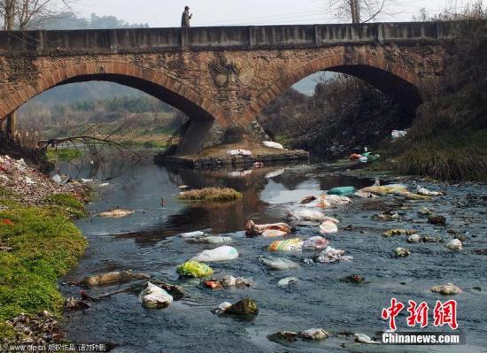 资料图:湖北宜昌市夷陵区鸦鹊岭镇新场村至胡家包地段,村民将约20头病死猪、大量生活垃圾扔在新场河河水、河道中,造成水污染、湿地污染触目惊心。如何提高当地居民的环保意识、加强对病死猪、生活垃圾的处理和监管,亟需有关部门采取强有力的有效措施。蒲公英 摄 图片来源:CFP视觉中国