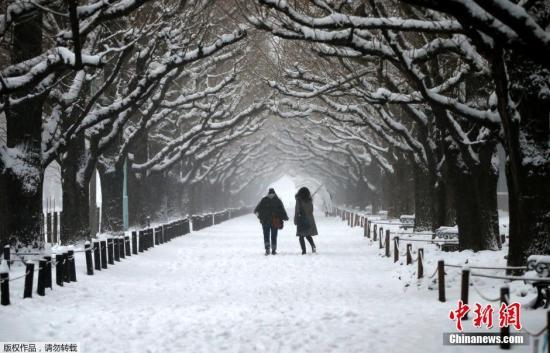 资料图:当地时间2014年2月8日,日本东京迎来降雪。图为日本东京雪景。