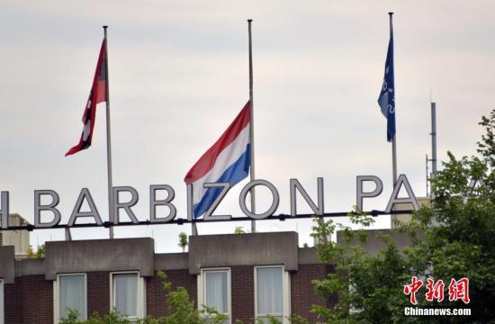 美媒:乌克兰总理表示准备将坠机调查权移交荷兰