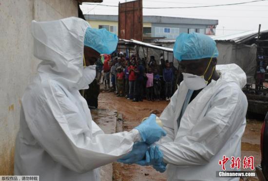 当地时间8月17日,在利比里亚蒙罗维亚的一个村庄,卫生工作人员穿着防护服准备队一具尸体进行转移。目前,埃博拉疫情已在西非四国造成一千多人死亡,其中大部分在利比里亚。为了尽量控制埃博拉疫情的蔓延,利比里亚已经对疫情严重的中心村庄进行了隔离,切断了与外界的联系。