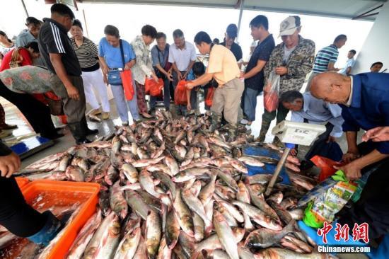 食药监:鲜活水产品使用孔雀石绿等问题仍较突出