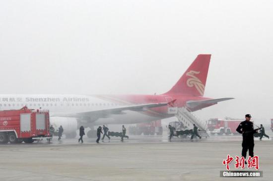 资料图:哈尔滨机场。<a target='_blank' href='http://www.chinanews.com/'>中新社</a>发 陈天一 摄