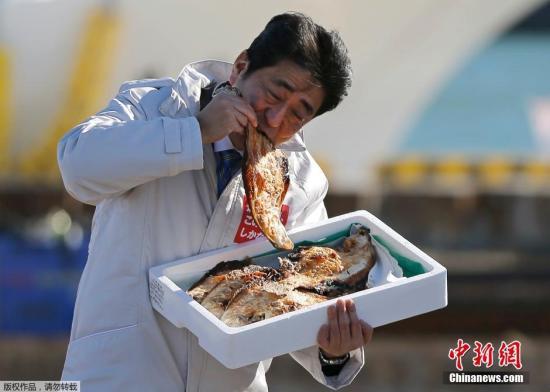 当地时间12月2日,日本首相、自民党党首安倍晋三在日本福岛相马市参加一场活动,为12月14日的众院选举拉票。为了讨好当地民众,安倍在活动现场品尝当地特色烤鱼,显示对农产品的支持。