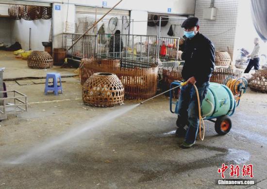 工作人员对家禽市场进行消毒。刘可耕 摄