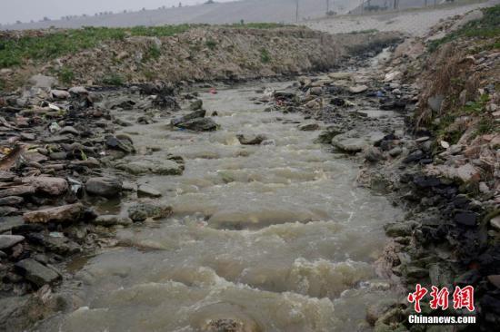 """1月24日,陕西省安康市汉江段城区东坝附近河滩上的油菜地及装着垃圾、随意丢弃的蛇皮袋。作为长江最大支流的汉江河,是南水北调中线工程水源地。在安康市三桥附近的江汉边建筑垃圾随意倾倒,堆积成山,生活污水直排流入汉江清晰可见。城区东坝附近,生活污水依然未经处理""""哗哗""""直接排进汉江,周围气味异常恶臭。在排污口的河滩上,一根水管从污水口引出浇油菜地。边上有许多装着垃圾、随意丢弃的蛇皮袋。中新社发 图片来源:CNSPHOTO"""