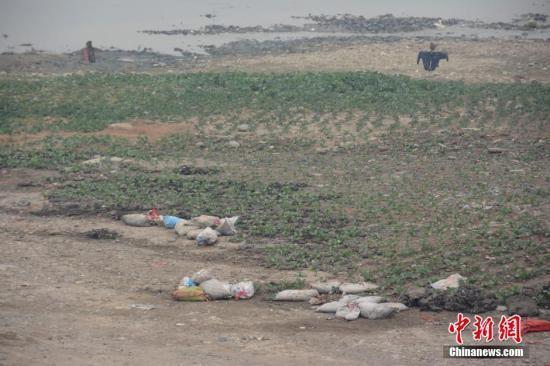资料图:被污染的河滩 <a target='_blank' href='http://www.chinanews.com/'>中新社</a>发 图片来源:CNSPHOTO