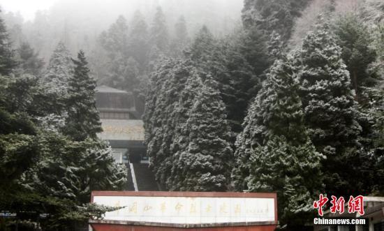 江西井冈山景区在冰天雪地中展现出另一番风采,松杉堆雪,白絮纷飞,银峰起伏,一派北国风光。李德清 摄