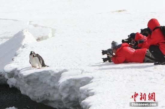 资料图:游客在南极探险旅行刘延珉 摄 图片来源:CFP视觉中国