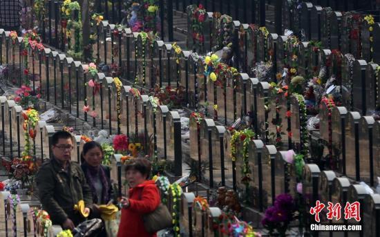 南京市民在当地一处墓园内的墓碑前祭奠亲人。<a target='_blank' href='http://www.chinanews.com/'>中新社</a>发 泱波 摄
