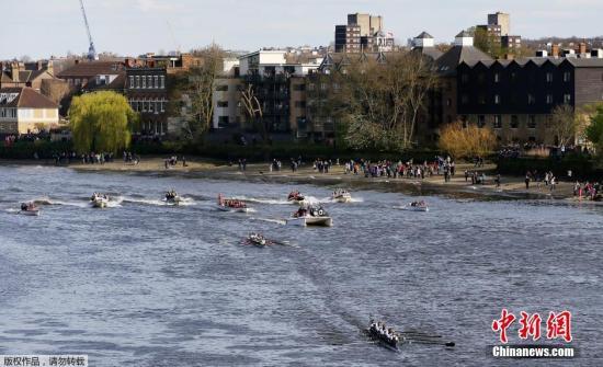 图为赛艇比赛进行中。