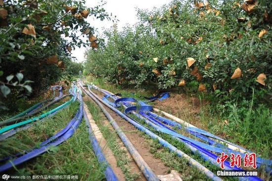 农业水价综合改革稳步推进 30省份已印发省级实施方案