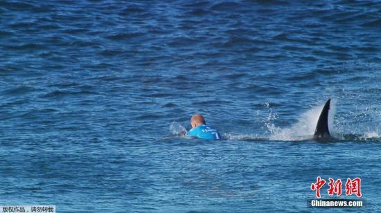 资料图:2015年7月19日,澳大利亚著名冲浪运动员米克·范宁在南非比赛期间竟遭到大鲨鱼袭击,惊险逃脱。整个过程被现场录像记录下来。 画面显示,鲨鱼就在范宁身后出现。