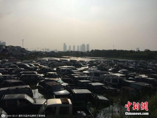 资料图:已报废汽车。图片来源:CFP视觉中国