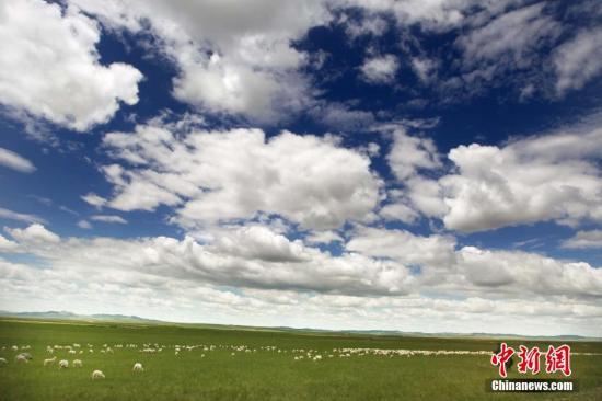 资料图:内蒙古乌拉盖大草原。任晨鸣 摄