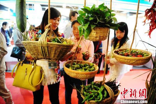 9月11日,甘肃张掖绿色有机农业产品辣椒、西红柿、葡萄等汇聚展会吸引宾客。图为绿色有机农产品吸引宾客品尝。 杨艳敏 摄