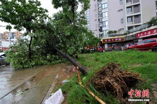 福建启动防台风Ⅳ级应急响应