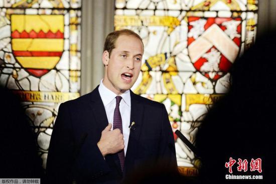 英威廉王子今夏将首访巴以地区 巴以双方积极回应
