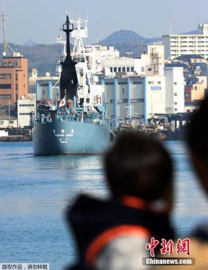 早在2014年3月,国际法院曾下达判决,勒令日本停止在南极海域的科研捕鲸。此后日本仅开展了目视调查,此次将重启捕鲸调查。