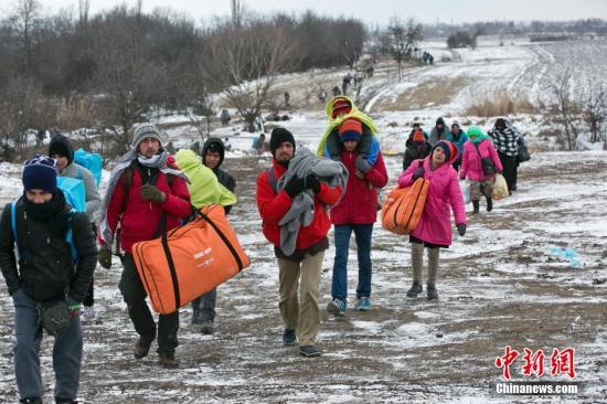 (国际观察)带着文凭上路的难民