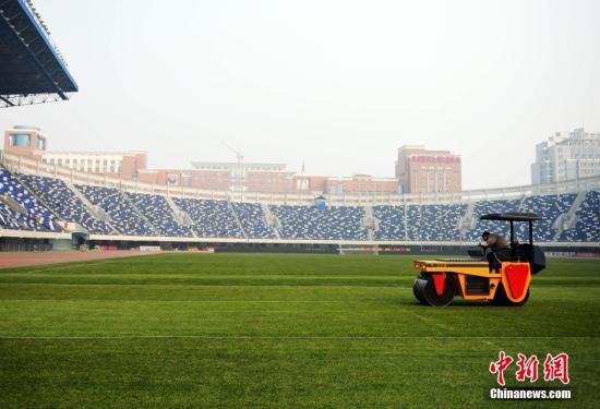 资料图:足球运动赛场。中新社记者 翟羽佳 摄
