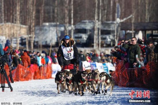 当地时间3月6日,爱迪塔罗德狗拉雪橇大赛在阿拉斯加州开战。
