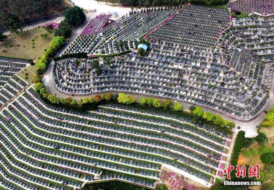 从空中鸟瞰福州一家陵园,如花园般美丽而整齐。 王东明 摄