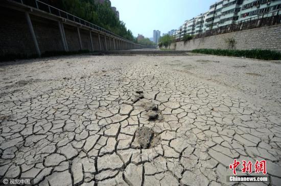 4月12日,山东省济南市连续58天没有出现降雨,旱情严重,市区主河道兴济河原来一米深多河水已经全部干涸,河底龟裂如同蜘蛛网。据了解,济南最近一次降雨出现在2月13日,3月份降水量全市平均0.2毫米,列1950年以来历史同期倒数第二位(倒数第一位是2011年零降水,并列倒数第二位是2014年0.2毫米)。图片来源:视觉中国