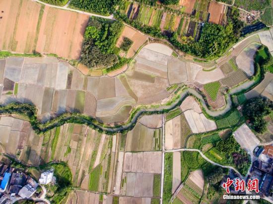图为航拍广西柳州市柳北区沙塘镇耕地,五彩缤纷。 黄威铭 摄