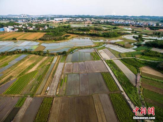 资料图 航拍广西柳州市柳北区沙塘镇耕地,五彩缤纷。 黄威铭 摄