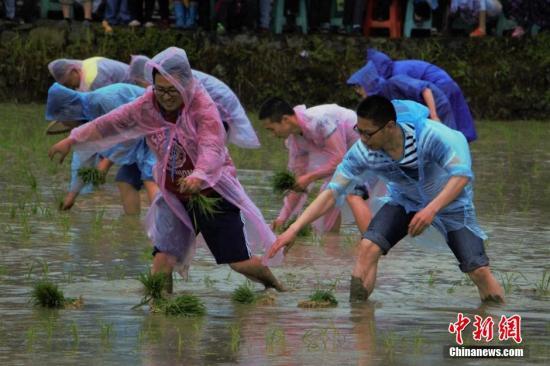 中国将从叁方面保障和改革农村民生