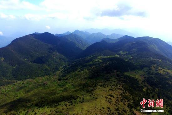 农夫山泉毁武夷山国家公园林区?官方:取水点不在公园内