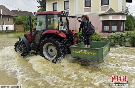 德国累根河水也延伸到左近的小镇上,图为一辆农用迁延机开上积满水的大街。