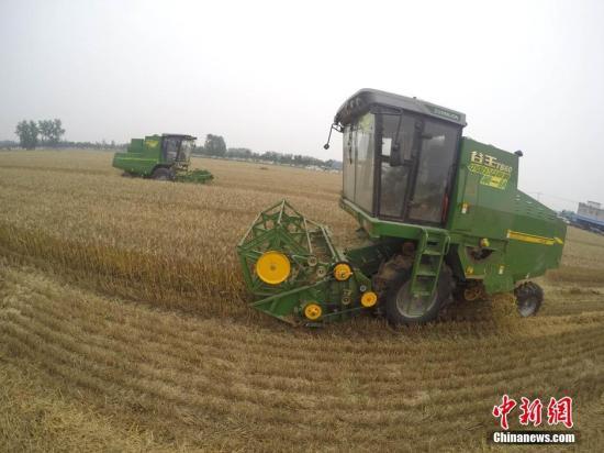 资料图:收割队正在为农户抢收小麦。中新社记者 张娅子 摄