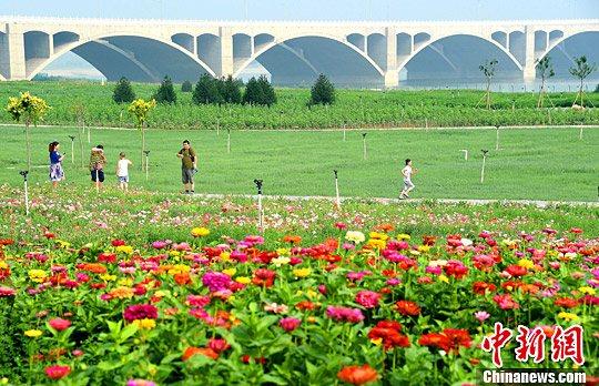 """7月6日,河北石家庄滹沱河畔,碧绿的河水与鲜花相互映衬,市民们正在""""绿色长廊""""中游玩。据了解,当地政府实施增绿治霾,利用滹沱河两岸进行生态修复和开发,打造生态绿色长廊。图为部分已成形的""""生态绿廊""""。<a target='_blank' href='http://www.chinanews.com/'>中新社</a>记者 翟羽佳 摄"""