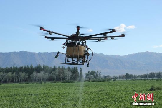资料图:用飞机洒农药飞机防治所需药量比地面防治减少20%,在减少浪费的同时,也将减少土地药物残留,减轻土壤污染。哈那提 摄