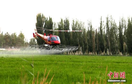 资料图:新疆农民利用无人机对农作物喷洒农药。李江帆 摄