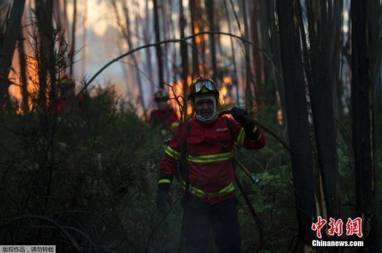 当地时间2016年8月7日,葡萄牙北部特罗法,当地发生山火。因7月份罕见高温天气,极易出现山火。