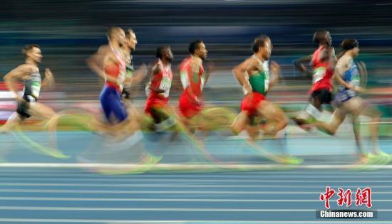 资料图:当地时间8月18日,2016里约奥运会男子1500米半决赛在里约奥林匹克体育场鸣枪。记者 盛佳鹏 摄