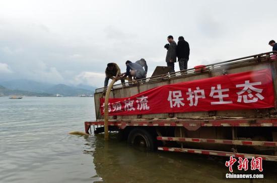 农业农村部:加强长江流域禁捕执法 打击非法捕捞行为