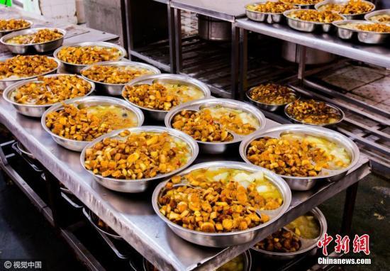 资料图:午餐。图片来源:视觉中国